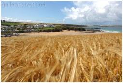 Trevine Bay-Cornwall