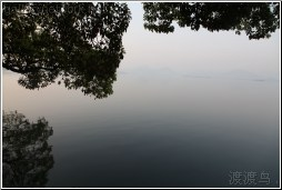 west lake reflection - 渡渡鸟 .
