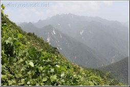 qinling mountainscape