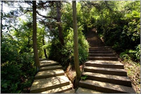 split walking trail