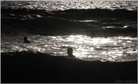 wavelife