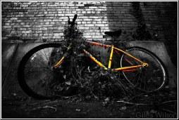 retired bike