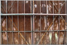rusted door with bars