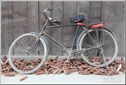 corn bike