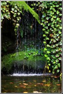 WATER FULL
