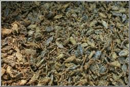 Dried Scorpion