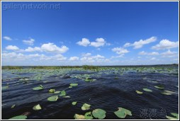 lake trafford florida