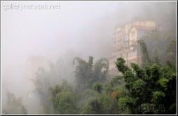 sapa bamboo mist