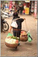 hanoi fruit vendor