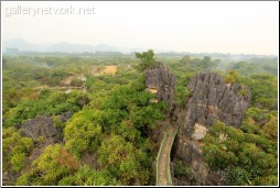 stone forest lookout - 渡渡鸟 .