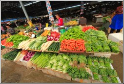 veg market - 渡渡鸟 .