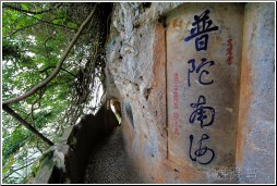 xishan cliffwalk - 渡渡鸟 .