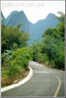 road to vietnam - 渡渡鸟 .