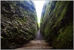 moss cave - C K