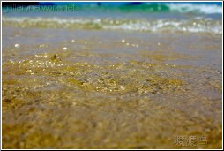shallow sandy water